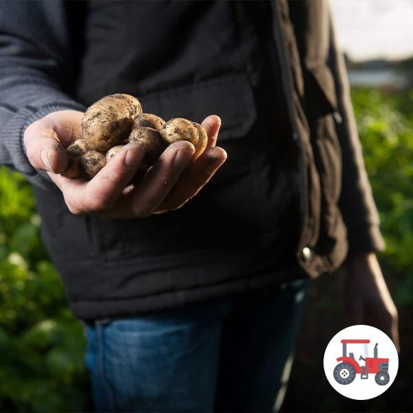 Dotation aux jeunes agriculteurs - Réduction des Phyto - Jeunes Agriculteurs du Calvados - Informations officielles