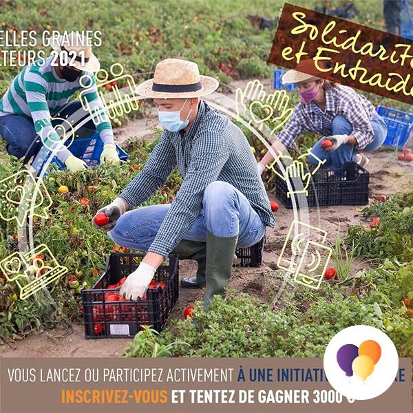 Lancement de l'édition 2021 de graines d'agriculteurs - Jeunes Agriculteurs du Calvados